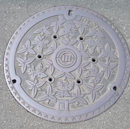 DSCF0279-1.JPG