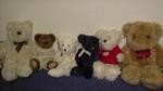 bears2005.JPG
