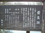 shinseiko.JPG